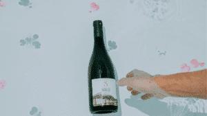 Un vin bien frais pour un départ en vadrouille