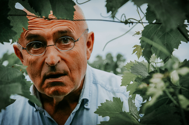 Vigneron Chemins Dorients Presentation